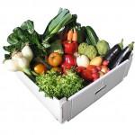 ¿Quién gana con el desprestigio de los alimentos ecológicos?