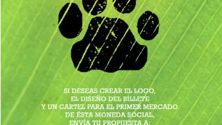El Puma busca Logo, Billete y Cartel