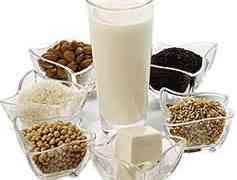 TALLER: Preparació de llets d'ametlla, civada, arròs i sèsam.