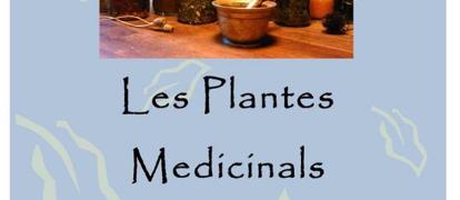 [Diumenge 14 - Poboleda] Taller de plantes medicinals